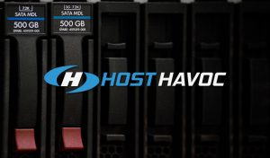 Inside gameserver hosting by Host Havoc