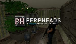 Interview with Perpheads a Garry's Mod community